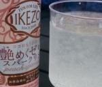 Japan - Spice Hand Roll & Sake Gell