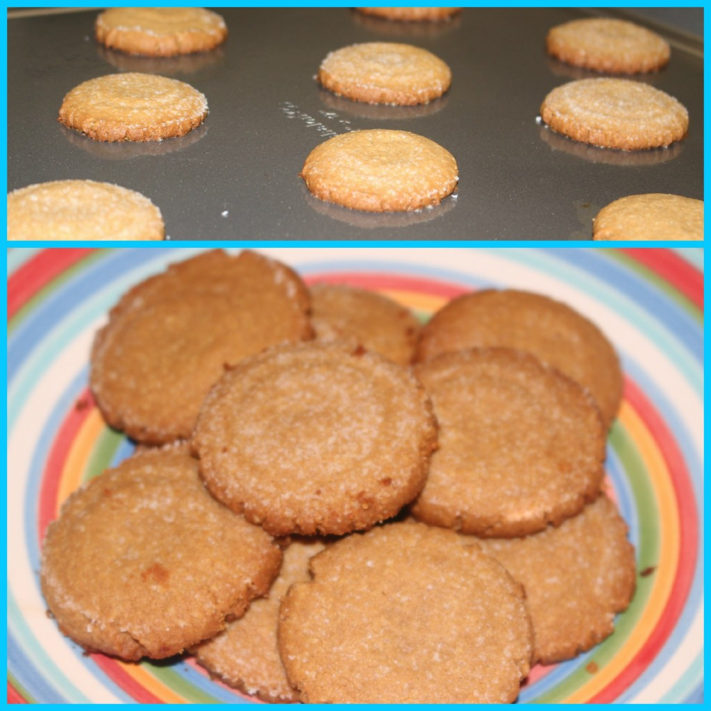 PB Cookies Final
