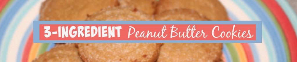 PB Cookies 3 ingred cookies