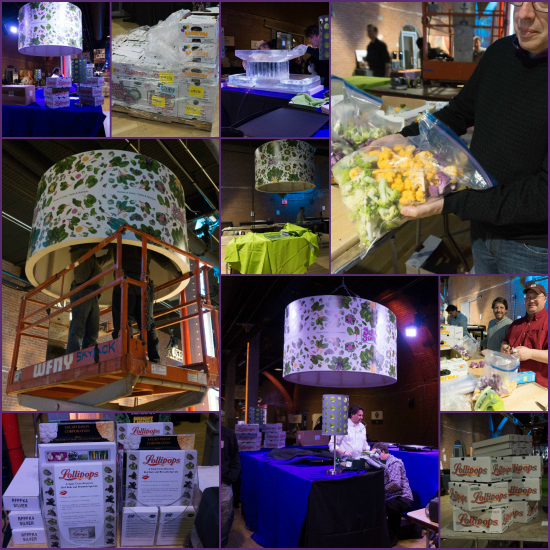 Setting-Up-Collage-2