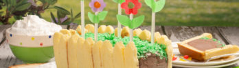 Spring Fling Ice Cream Cake